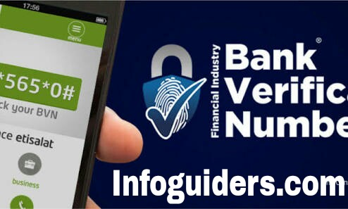Check BVN Online Best way