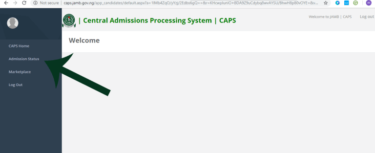 In the Central Admissions Processing System (CAPS) Dashboard, click on Admission Status.