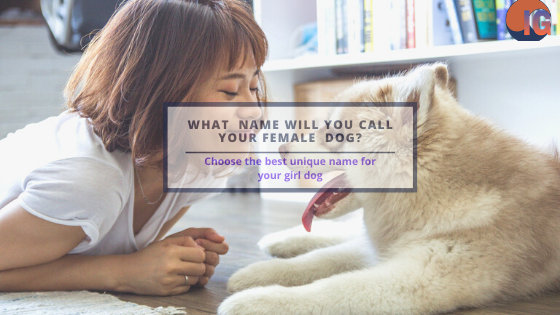 Best Female Dog Names